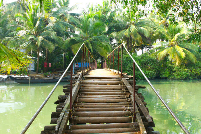 Day 1 - Drive from Cochin to Kumarakom